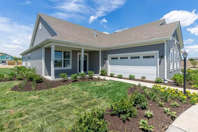 14158 Clover Avenue, Cedar Lake, IN 46303 (MLS #491354) :: McCormick Real Estate