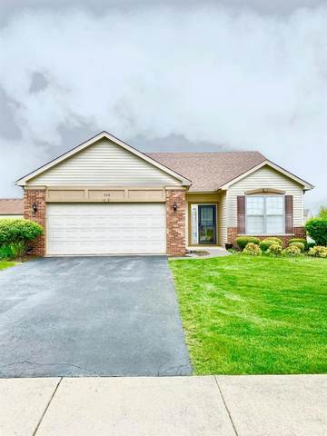 550 E 115th Place, Crown Point, IN 46307 (MLS #492402) :: Lisa Gaff Team