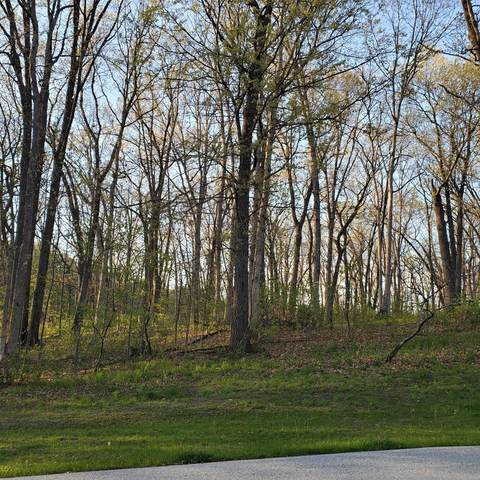 500 132nd Place, Crown Point, IN 46307 (MLS #492464) :: McCormick Real Estate