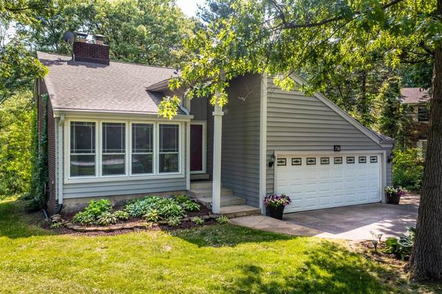 716 Schilling Drive, Dyer, IN 46311 (MLS #494627) :: McCormick Real Estate