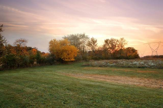 16848-Lot 1 Holtz Road, Lowell, IN 46356 (MLS #495283) :: McCormick Real Estate