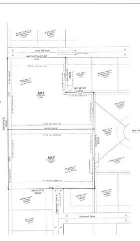 0-Lot 1 Sand Hill Trail, Demotte, IN 46310 (MLS #495917) :: McCormick Real Estate