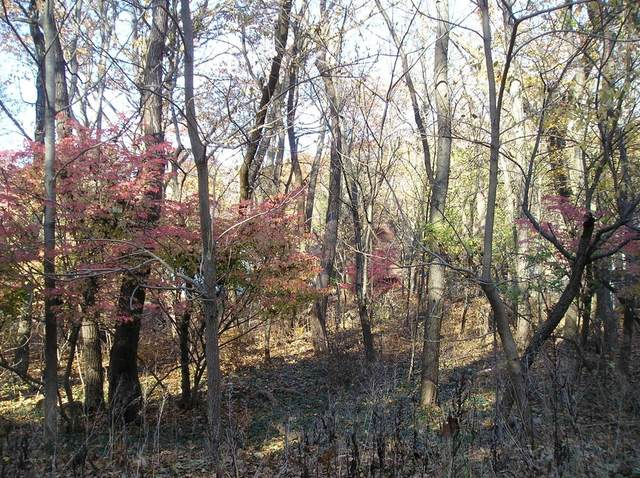 0 Birch Drive, Michigan City, IN 46360 (MLS #496338) :: McCormick Real Estate