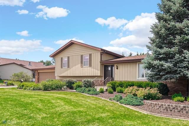 1100 W 132nd Lane, Crown Point, IN 46307 (MLS #496667) :: McCormick Real Estate
