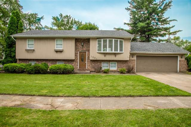 1001 W 10th Street, Hobart, IN 46342 (MLS #496847) :: McCormick Real Estate