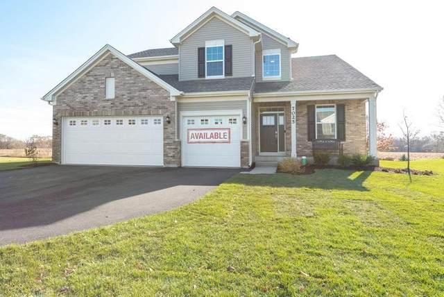 10042 W 144th Court, Cedar Lake, IN 46303 (MLS #497614) :: McCormick Real Estate