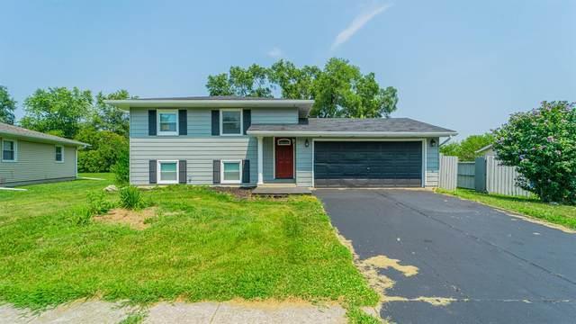 1635 Bluebird Lane, Lowell, IN 46356 (MLS #498735) :: McCormick Real Estate