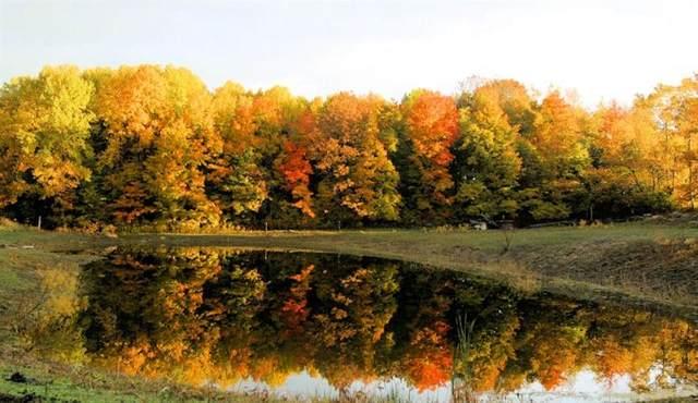 1039 Country Creek Lane, Chesterton, IN 46304 (MLS #500321) :: Lisa Gaff Team
