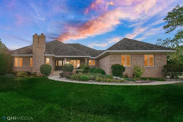 812 Royal Dublin Lane, Dyer, IN 46311 (MLS #500563) :: McCormick Real Estate