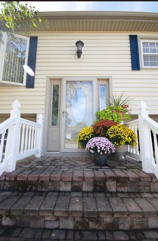 1024 Van Buren Avenue, Dyer, IN 46311 (MLS #501976) :: McCormick Real Estate