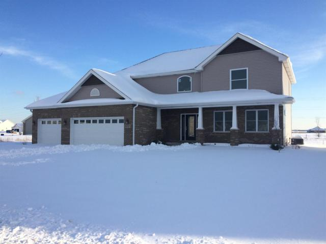 8285 W 101st Place, St. John, IN 46373 (MLS #429256) :: Rossi and Taylor Realty Group