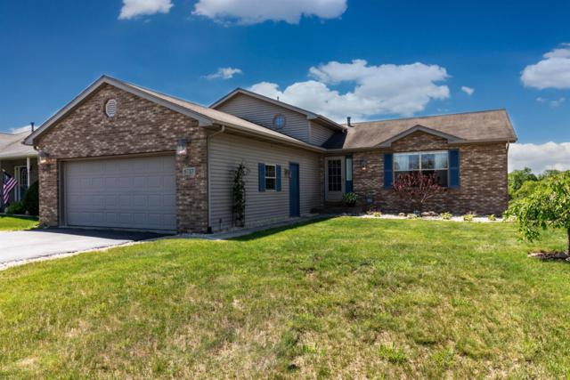 8717 E 124th Place, Crown Point, IN 46307 (MLS #435566) :: Rossi and Taylor Realty Group