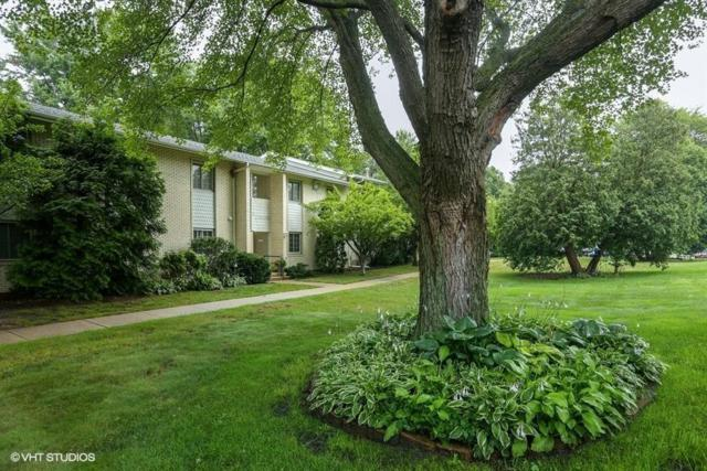 413 Birch Tree Lane, Michigan City, IN 46360 (MLS #439377) :: Rossi and Taylor Realty Group