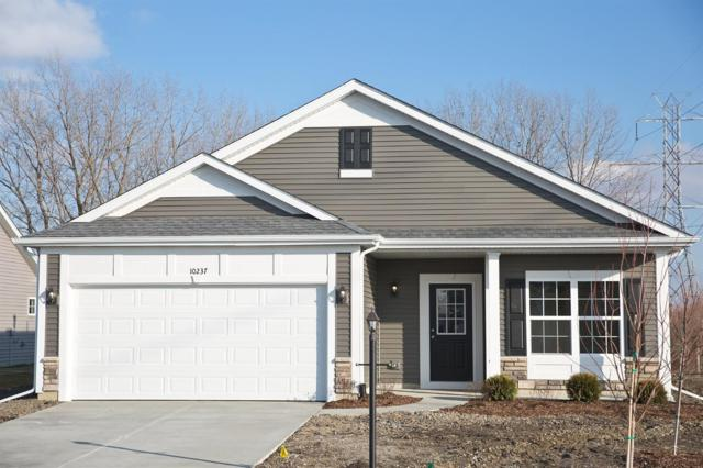 10237 W Towle Place, Dyer, IN 46311 (MLS #446903) :: Rossi and Taylor Realty Group