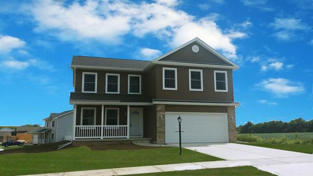 17401 Patriot Place, Lowell, IN 46356 (MLS #463799) :: McCormick Real Estate