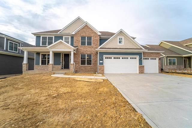 9816 Tall Grass Trail, St. John, IN 46373 (MLS #468152) :: Rossi and Taylor Realty Group