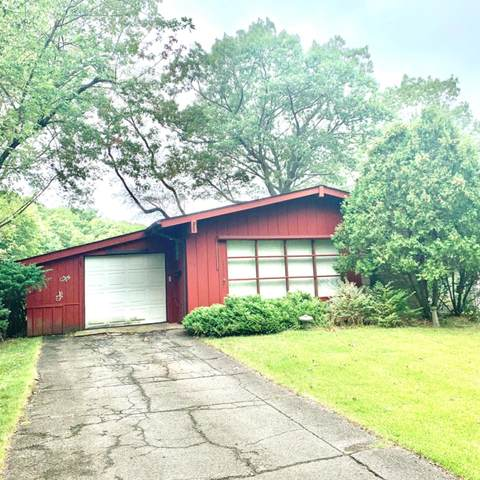 700 N Ripley Street, Gary, IN 46403 (MLS #481624) :: Rossi and Taylor Realty Group