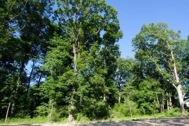 19-lot Willard Lane, Lowell, IN 46356 (MLS #498424) :: McCormick Real Estate