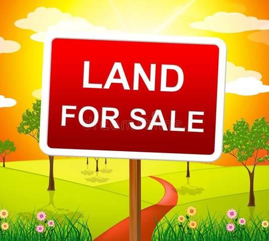 1710 Sycamore Lane, Hobart, IN 46342 (MLS #503214) :: McCormick Real Estate