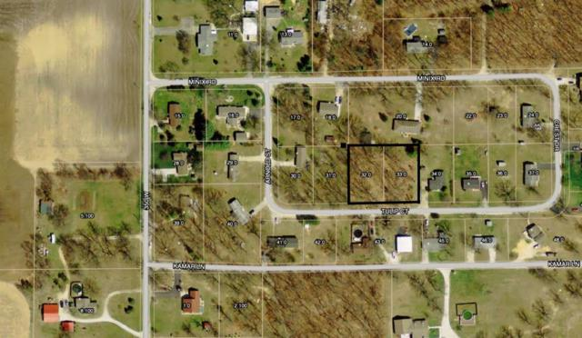 0-TBD Tulip Court Tbd, North Judson, IN 46366 (MLS #322620) :: McCormick Real Estate