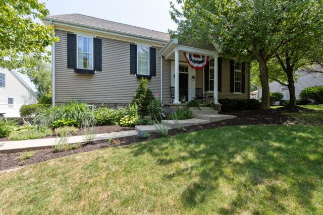 238 Moncrief Drive, Valparaiso, IN 46385 (MLS #458883) :: Rossi and Taylor Realty Group