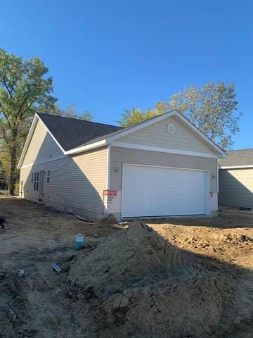 115 Summer Tree Drive, Porter, IN 46304 (MLS #478268) :: Rossi and Taylor Realty Group