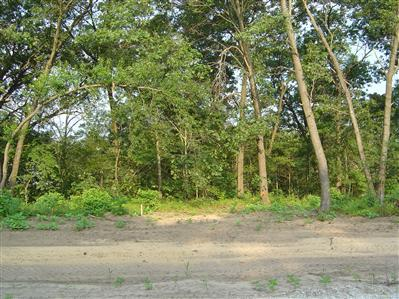 8319-Lot 81 Deer Meadow Path, Demotte, IN 46310 (MLS #384866) :: McCormick Real Estate