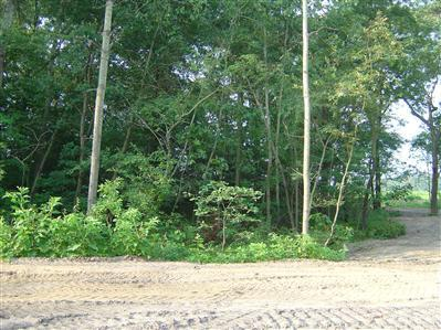 8598-Lot 14 Old Oak Drive, Demotte, IN 46310 (MLS #384874) :: Rossi and Taylor Realty Group