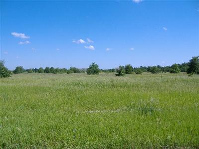 600 W Lot 6 800 N, Lake Village, IN 46349 (MLS #429166) :: Rossi and Taylor Realty Group