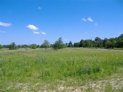 600-Lot 20 W 800 N, Lake Village, IN 46349 (MLS #429168) :: Rossi and Taylor Realty Group