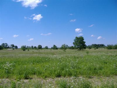 600-Lot 10 W 800 N, Lake Village, IN 46349 (MLS #429171) :: Rossi and Taylor Realty Group