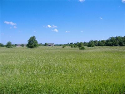 600 W Lot 7 800 N, Lake Village, IN 46349 (MLS #429172) :: Rossi and Taylor Realty Group