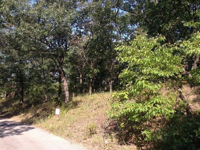 0-Lot 14 Summit Drive - Photo 1
