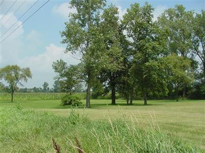 0 Us Hwy 231 S, Rensselaer, IN 47978 (MLS #454126) :: Rossi and Taylor Realty Group