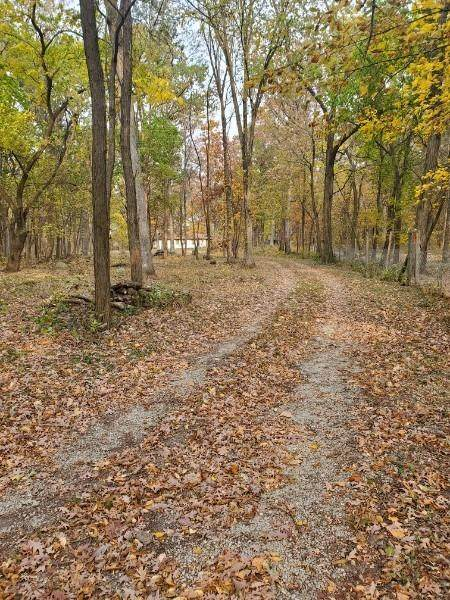13132 Morse Street, Cedar Lake, IN 46303 (MLS #485223) :: McCormick Real Estate