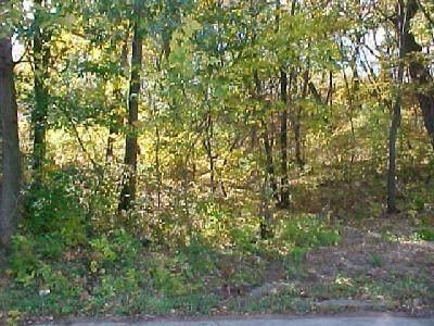 62 Diana Road, Ogden Dunes, IN 46368 (MLS #487997) :: McCormick Real Estate