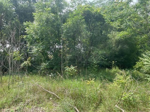 6736-6750 Birch Avenue, Gary, IN 46403 (MLS #498003) :: McCormick Real Estate