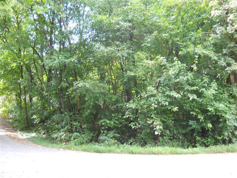 0 Spruce Lane - Photo 1