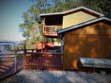 Goldfinch Loop Sapelo Gardens - Photo 12