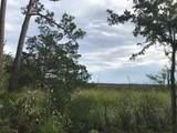 140 Bartram Trail - Photo 6