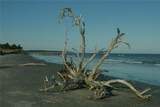 24 Hird Island - Photo 40