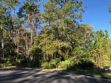 188 Bluebill Trail - Photo 1
