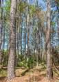 320 Oak Grove Island Drive - Photo 5