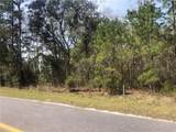 4 Cattle Hammock Road - Photo 1