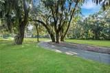 161 Limeburn Trail - Photo 19