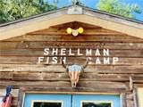 1130 New Shellman Road - Photo 8