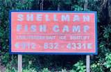 1130 New Shellman Road - Photo 9