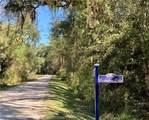 Lot 35 Carnochan Bluff - Photo 5