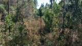 0 Ga Hwy 251 (66.65 Acres) - Photo 3