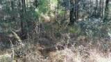 0 Ga Hwy 251 (66.65 Acres) - Photo 6